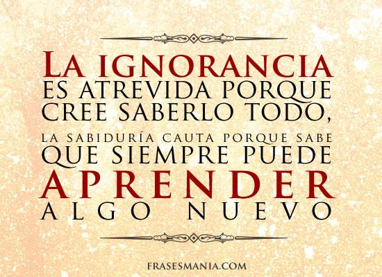 La Ignorancia Es Atrevida Porque Cree Frases