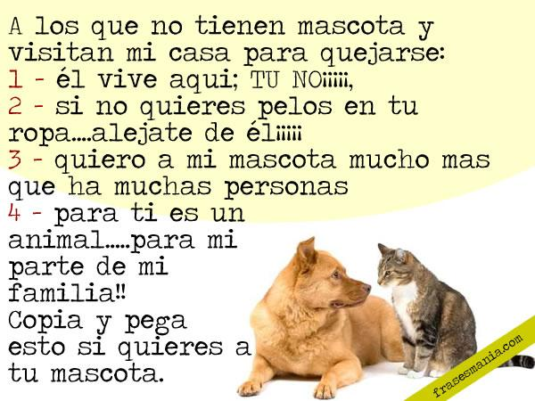 iCachondeo » frases cachondas